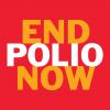 End Polio Now tulp